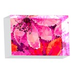 Geometric Magenta Garden 4 x 6  Acrylic Photo Blocks Front