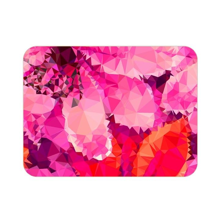 Geometric Magenta Garden Double Sided Flano Blanket (Mini)