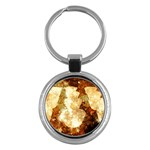 Sparkling Lights Key Chains (Round)  Front