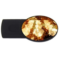 Sparkling Lights USB Flash Drive Oval (1 GB)