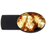 Sparkling Lights USB Flash Drive Oval (1 GB)  Front