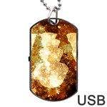 Sparkling Lights Dog Tag USB Flash (Two Sides)  Front