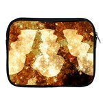 Sparkling Lights Apple iPad 2/3/4 Zipper Cases Front