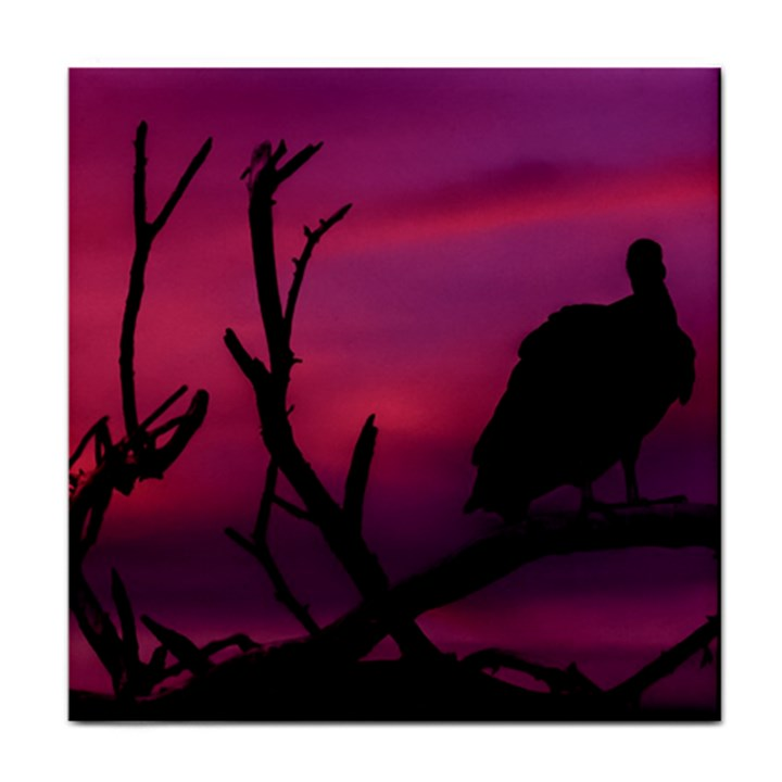 Vultures At Top Of Tree Silhouette Illustration Tile Coasters