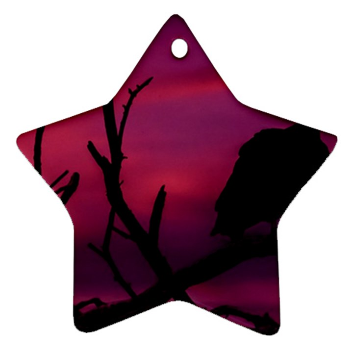 Vultures At Top Of Tree Silhouette Illustration Ornament (Star)