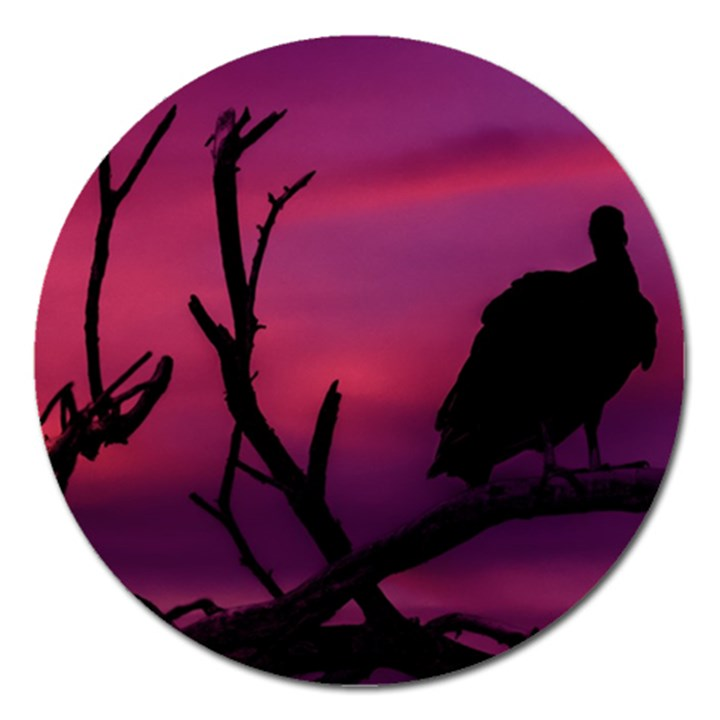 Vultures At Top Of Tree Silhouette Illustration Magnet 5  (Round)