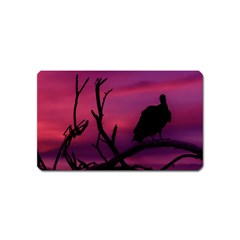 Vultures At Top Of Tree Silhouette Illustration Magnet (Name Card)