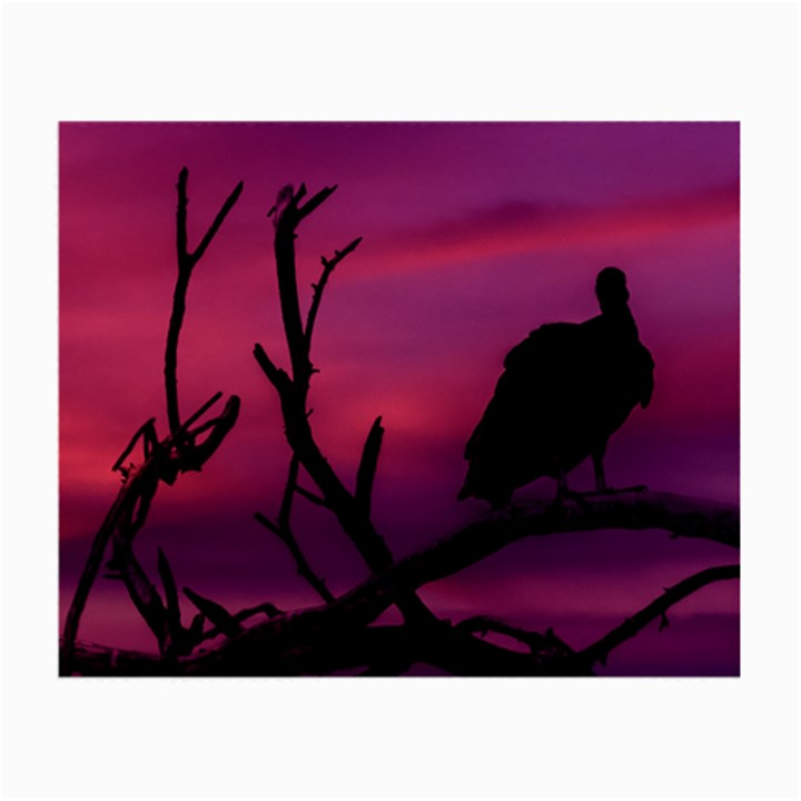 Vultures At Top Of Tree Silhouette Illustration Small Glasses Cloth