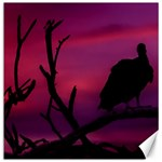 Vultures At Top Of Tree Silhouette Illustration Canvas 12  x 12   12 x12 Canvas - 1