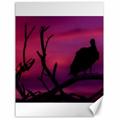 Vultures At Top Of Tree Silhouette Illustration Canvas 12  x 16