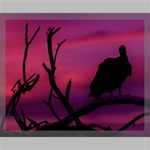 Vultures At Top Of Tree Silhouette Illustration Canvas 20  x 16  20  x 16  x 0.875  Stretched Canvas