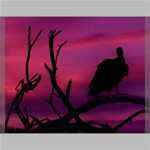 Vultures At Top Of Tree Silhouette Illustration Canvas 24  x 20  24  x 20  x 0.875  Stretched Canvas