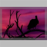 Vultures At Top Of Tree Silhouette Illustration Canvas 18  x 12  18  x 12  x 0.875  Stretched Canvas