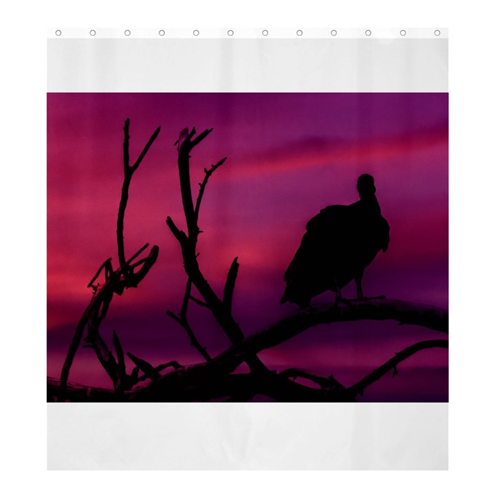 Vultures At Top Of Tree Silhouette Illustration Shower Curtain 66  x 72  (Large)