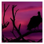 Vultures At Top Of Tree Silhouette Illustration Small Memo Pads 3.75 x3.75  Memopad