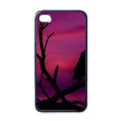 Vultures At Top Of Tree Silhouette Illustration Apple iPhone 4 Case (Black)