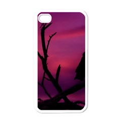 Vultures At Top Of Tree Silhouette Illustration Apple iPhone 4 Case (White)