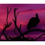 Vultures At Top Of Tree Silhouette Illustration Deluxe Canvas 14  x 11  14  x 11  x 1.5  Stretched Canvas