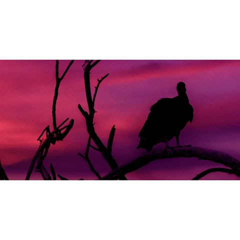 Vultures At Top Of Tree Silhouette Illustration YOU ARE INVITED 3D Greeting Card (8x4)