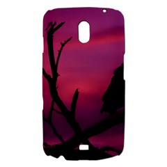 Vultures At Top Of Tree Silhouette Illustration Samsung Galaxy Nexus i9250 Hardshell Case