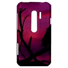 Vultures At Top Of Tree Silhouette Illustration HTC Evo 3D Hardshell Case