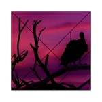 Vultures At Top Of Tree Silhouette Illustration Acrylic Tangram Puzzle (6  x 6 ) Front