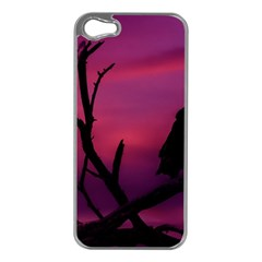 Vultures At Top Of Tree Silhouette Illustration Apple Iphone 5 Case (silver)