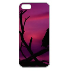 Vultures At Top Of Tree Silhouette Illustration Apple Seamless iPhone 5 Case (Clear)