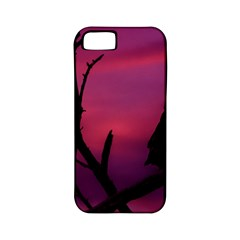 Vultures At Top Of Tree Silhouette Illustration Apple iPhone 5 Classic Hardshell Case (PC+Silicone)