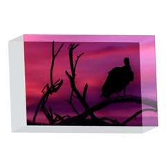 Vultures At Top Of Tree Silhouette Illustration 4 x 6  Acrylic Photo Blocks