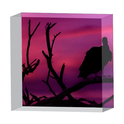 Vultures At Top Of Tree Silhouette Illustration 5  x 5  Acrylic Photo Blocks