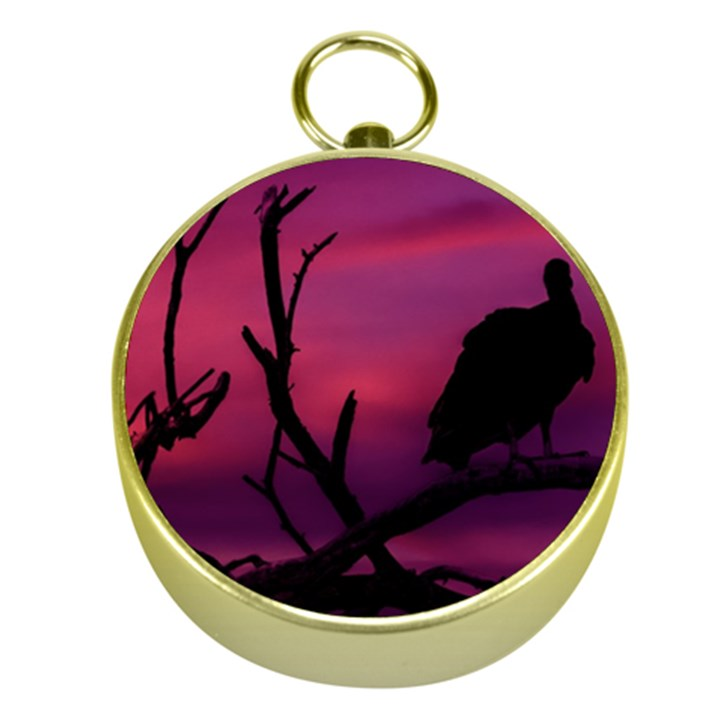 Vultures At Top Of Tree Silhouette Illustration Gold Compasses