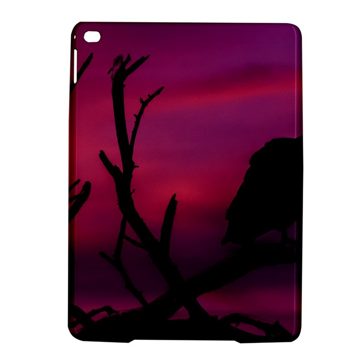 Vultures At Top Of Tree Silhouette Illustration iPad Air 2 Hardshell Cases