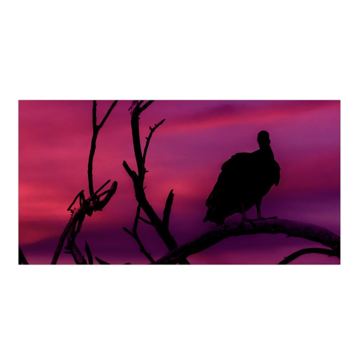 Vultures At Top Of Tree Silhouette Illustration Satin Shawl