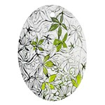Floral Pattern Background  Ornament (Oval)  Front