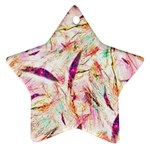 Grass Blades Star Ornament (Two Sides)  Front
