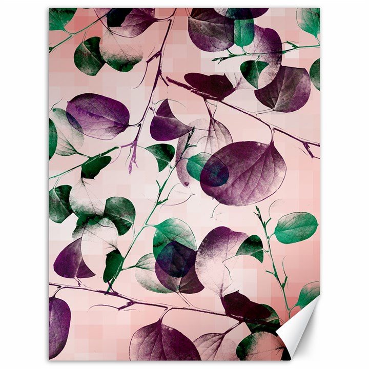Spiral Eucalyptus Leaves Canvas 12  x 16