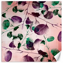 Spiral Eucalyptus Leaves Canvas 20  x 20