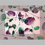 Spiral Eucalyptus Leaves Mini Canvas 6  x 4  6  x 4  x 0.875  Stretched Canvas