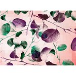 Spiral Eucalyptus Leaves BOY 3D Greeting Card (7x5) Front