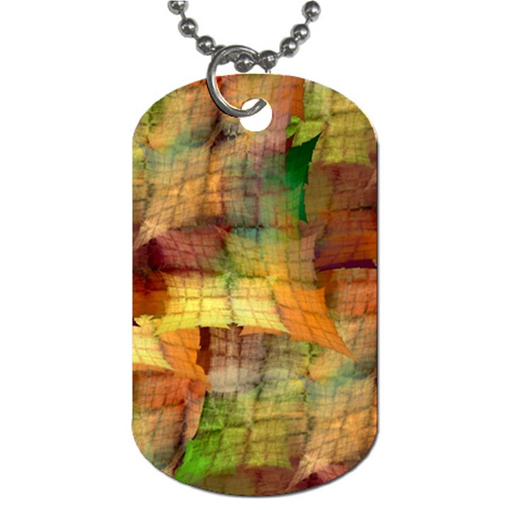 Indian Summer Funny Check Dog Tag (Two Sides)
