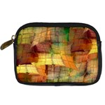 Indian Summer Funny Check Digital Camera Cases Front