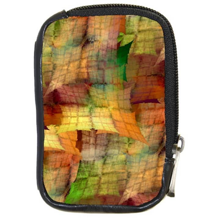Indian Summer Funny Check Compact Camera Cases