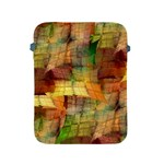 Indian Summer Funny Check Apple iPad 2/3/4 Protective Soft Cases Front