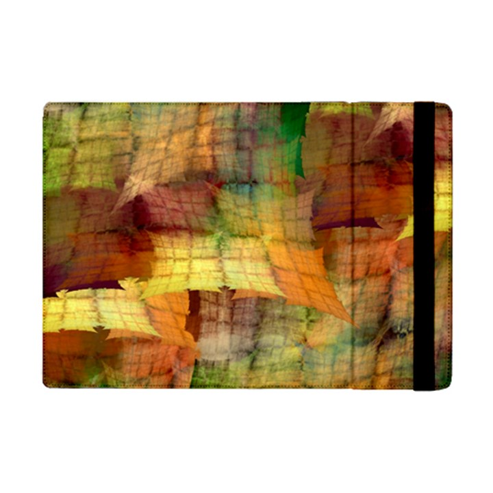 Indian Summer Funny Check iPad Mini 2 Flip Cases