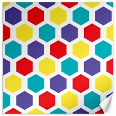 Hexagon Pattern  Canvas 20  x 20