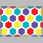 Hexagon Pattern  Canvas 18  x 12  18  x 12  x 0.875  Stretched Canvas