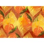 Fall Colors Leaves Pattern BOY 3D Greeting Card (7x5) Back
