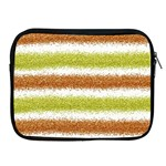 Metallic Gold Glitter Stripes Apple iPad 2/3/4 Zipper Cases Front
