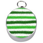 Metallic Green Glitter Stripes Silver Compasses Front